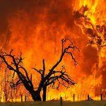 جنگل های بلوط «مُنگره» اندیمشک در آتش می سوزد/ بالگرد تنها راه اطفای آتش سوزی